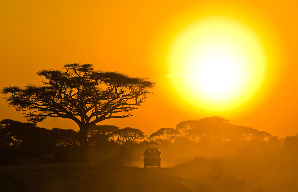 Safari jeep driving through savannah in the sunset in Amboseli ...