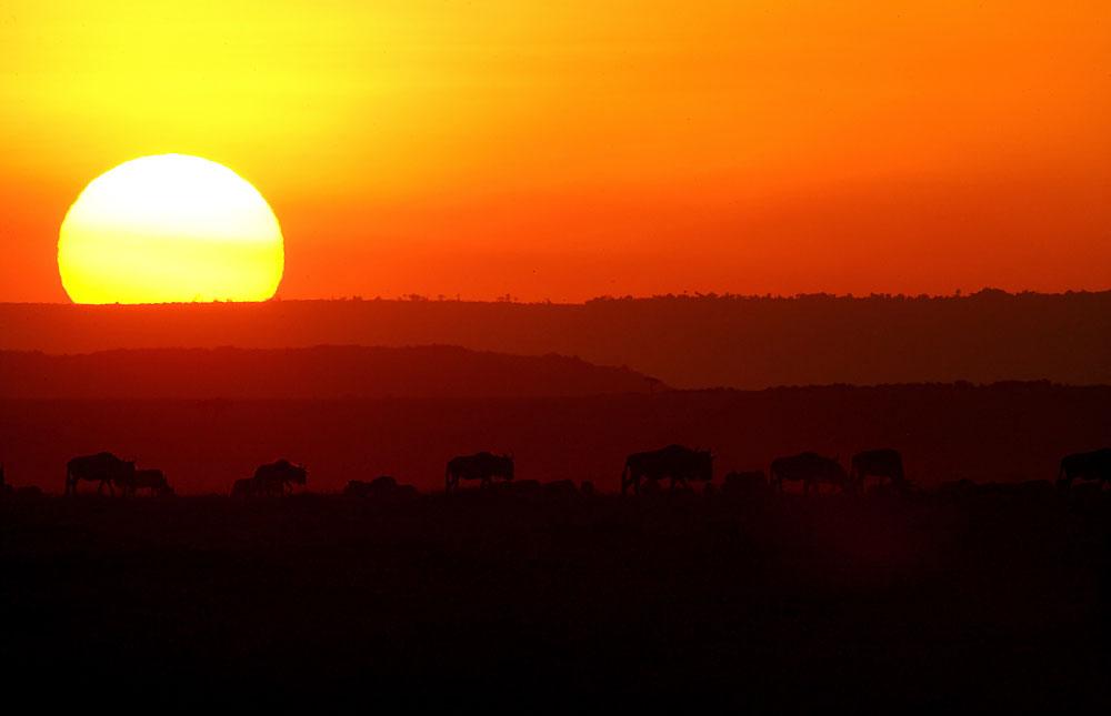 Nos vamos a Kenia! - UnCambiodeAires.com