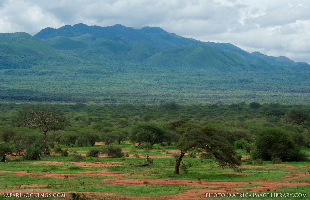 http://photos.safaribookings.com/library/kenya/xxl/Tsavo_West_National_Park_001.jpg